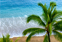 View of palm tree and Pacific ocean from Sands of Kahana condo in Maui, Hawaii.