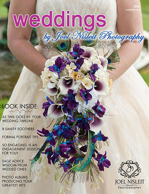 Milwaukee wedding photographer Joel Nisleit