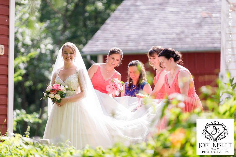 Bridesmaids veil dresses wedding milwaukee photographer